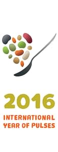 Logo - International Year of Pulses 2016