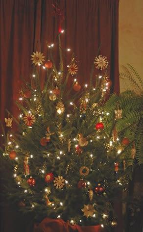 Kerstboom - Foto: AnneTanne - Creative Commons License